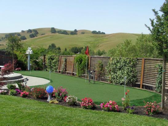 Artificial Grass Photos: Fake Grass Carpet Pomona Park, Florida Design Ideas, Backyard Landscaping