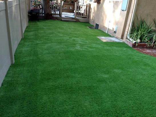 Artificial Grass Photos: Fake Grass Carpet Saint Augustine South, Florida Landscaping Business, Backyard Designs