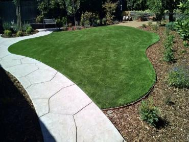 Artificial Grass Photos: Fake Grass Carpet Weeki Wachee, Florida Design Ideas, Front Yard Landscaping Ideas