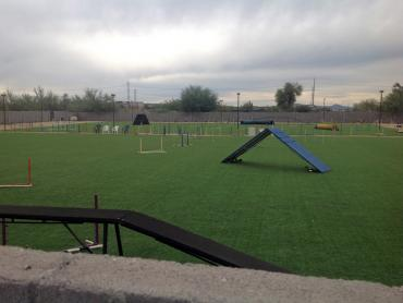 Artificial Grass Photos: Fake Grass Carpet Welaka, Florida Softball, Recreational Areas