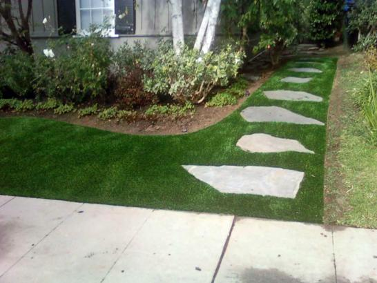 Artificial Grass Photos: Fake Grass Lacoochee, Florida Home And Garden, Front Yard Landscape Ideas