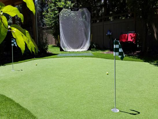 Artificial Grass Photos: Fake Grass Mascotte, Florida Indoor Putting Green, Backyard Garden Ideas