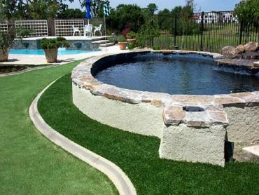 Artificial Grass Photos: Fake Lawn Alachua, Florida Artificial Putting Greens, Backyard Ideas