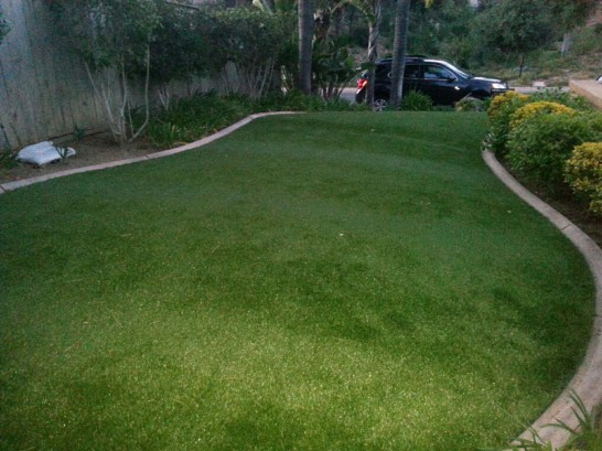 Artificial Grass Photos: Fake Lawn Brooksville, Florida Landscape Design, Front Yard Landscaping Ideas