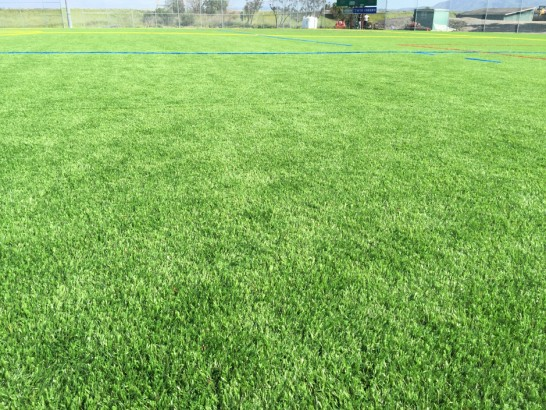 Artificial Grass Photos: Fake Lawn Center Hill, Florida Sports Athority