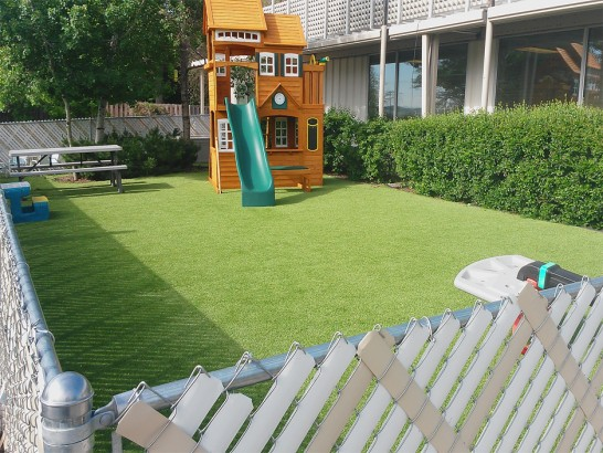 Artificial Grass Photos: Fake Lawn Winter Springs, Florida City Landscape, Backyard Landscape Ideas
