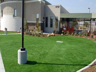 Artificial Grass Photos: Fake Turf Belleview, Florida Backyard Playground, Commercial Landscape