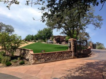 Artificial Grass Photos: Fake Turf Inverness Highlands South, Florida Landscaping, Front Yard Design