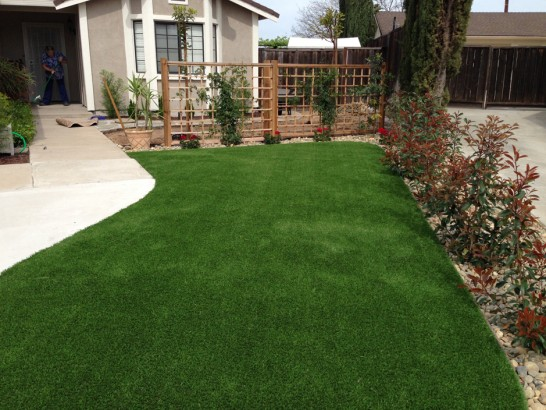 Artificial Grass Photos: Faux Grass Homosassa, Florida Roof Top, Landscaping Ideas For Front Yard