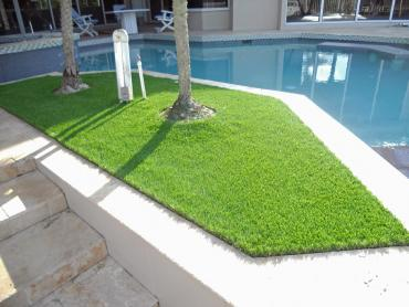Artificial Grass Photos: Faux Grass Lake City, Florida Design Ideas, Backyard