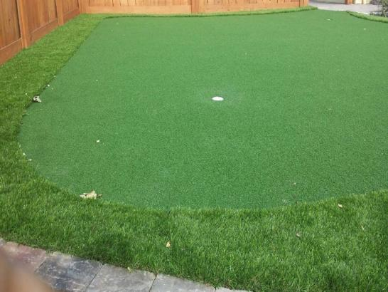 Artificial Grass Photos: Faux Grass Marineland, Florida Landscape Photos