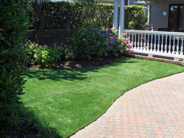 Artificial Grass Photos: Grass Carpet Crescent City, Florida Landscape Photos, Landscaping Ideas For Front Yard