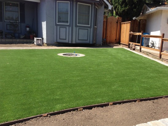 Artificial Grass Photos: Grass Carpet Fern Park, Florida Home And Garden, Backyard Landscape Ideas