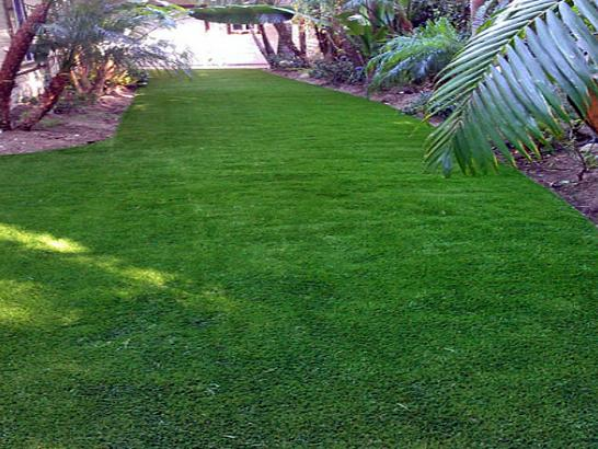 Artificial Grass Photos: Grass Carpet Newberry, Florida Landscaping, Backyard Makeover