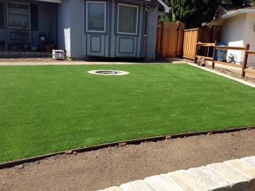 Artificial Grass Photos: Grass Carpet Sugarmill Woods, Florida Landscape Ideas, Front Yard Landscaping