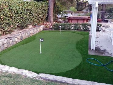 Artificial Grass Photos: Grass Carpet Wekiwa Springs, Florida Garden Ideas, Backyard Designs