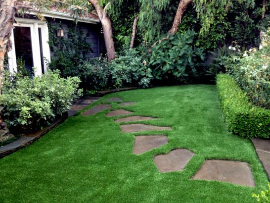 Artificial Grass Photos: Grass Carpet Zephyrhills, Florida Backyard Deck Ideas, Beautiful Backyards
