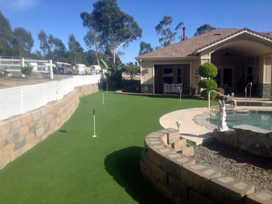 Artificial Grass Photos: Grass Installation Kissimmee, Florida Putting Green Turf, Backyard Landscaping