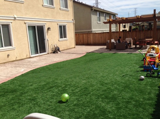 Artificial Grass Photos: Grass Turf Hill 'n Dale, Florida Lawn And Landscape, Backyard Landscape Ideas