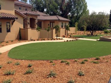 Artificial Grass Photos: Grass Turf Inverness Highlands North, Florida Backyard Playground, Front Yard