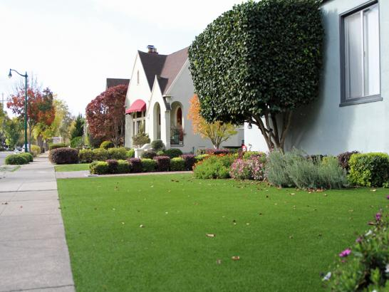 Artificial Grass Photos: Grass Turf Reddick, Florida Lawns, Front Yard Design