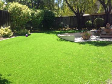 Artificial Grass Photos: Green Lawn Chiefland, Florida Lawns, Small Backyard Ideas