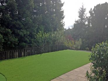 Artificial Grass Photos: Green Lawn Coleman, Florida Landscape Design, Beautiful Backyards