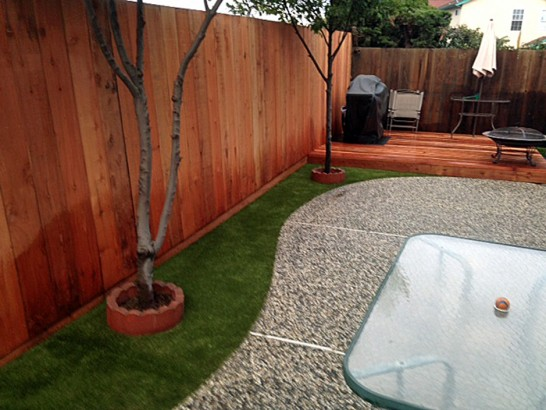 Artificial Grass Photos: Green Lawn Coleman, Florida Lawn And Landscape, Backyards