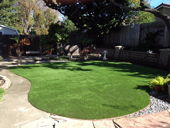 Artificial Grass Photos: Green Lawn Howie In The Hills, Florida Landscape Ideas, Backyard