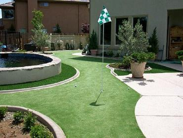 Artificial Grass Photos: Green Lawn Jasper, Florida Design Ideas, Backyard