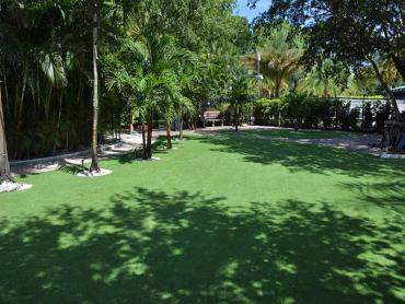 Artificial Grass Photos: Green Lawn Midway, Florida Lawn And Landscape, Commercial Landscape