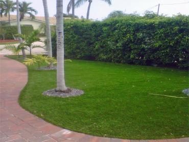 Artificial Grass Photos: Green Lawn Mims, Florida Landscape Ideas, Landscaping Ideas For Front Yard