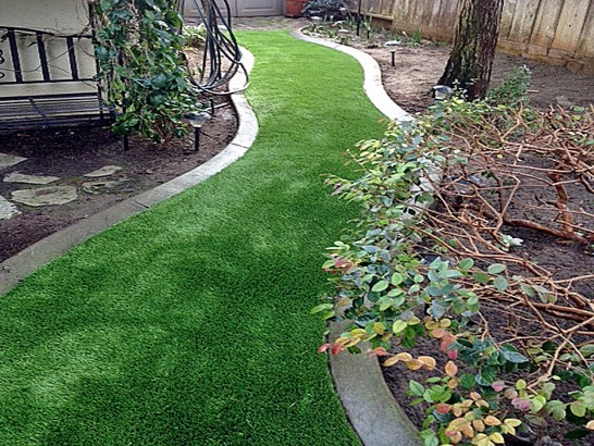 Artificial Grass Photos: How To Install Artificial Grass Citrus Hills, Florida  Landscape Design,