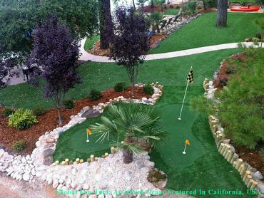 Artificial Grass Photos: How To Install Artificial Grass Jacksonville, Florida Gardeners, Backyard Garden Ideas
