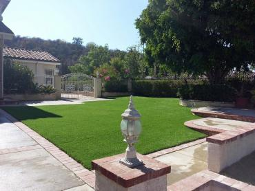 Artificial Grass Photos: Installing Artificial Grass Homosassa, Florida Gardeners, Front Yard Landscape Ideas