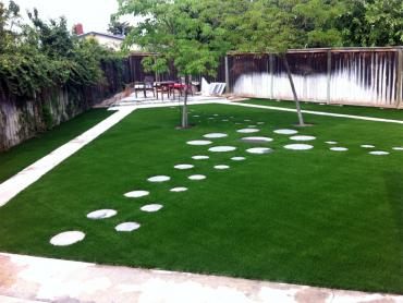 Artificial Grass Photos: Installing Artificial Grass New Smyrna Beach, Florida Landscape Ideas, Backyard Landscaping