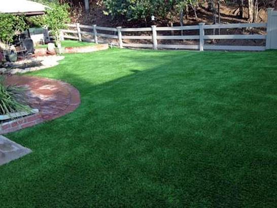 Artificial Grass Photos: Installing Artificial Grass Villano Beach, Florida Dog Park, Backyard Landscape Ideas