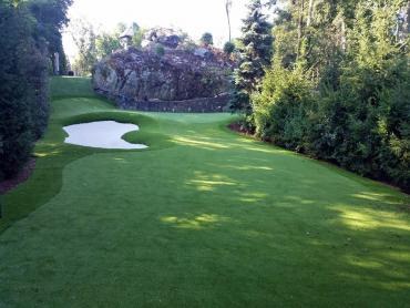 Lawn Services DeBary, Florida Indoor Putting Greens, Commercial Landscape artificial grass