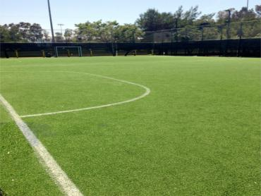 Artificial Grass Photos: Lawn Services Lisbon, Florida Stadium