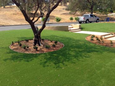 Artificial Grass Photos: Lawn Services Starke, Florida Landscape Rock, Front Yard Design