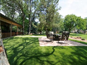 Artificial Grass Photos: Outdoor Carpet Live Oak, Florida Rooftop, Backyard Ideas