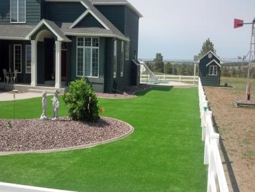 Artificial Grass Photos: Outdoor Carpet Polk City, Florida Lawns, Small Front Yard Landscaping