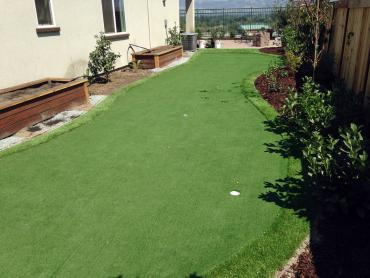 Artificial Grass Photos: Outdoor Carpet Saint Leo, Florida Putting Green, Backyard Makeover