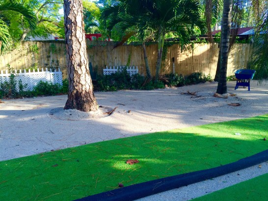 Artificial Grass Photos: Plastic Grass Conway, Florida Roof Top, Recreational Areas