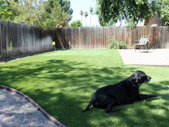 Artificial Grass Photos: Plastic Grass Ferndale, Florida Dog Run, Backyard Landscaping