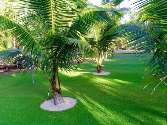 Artificial Grass Photos: Plastic Grass Gotha, Florida City Landscape, Commercial Landscape