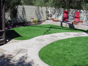 Artificial Grass Photos: Plastic Grass Groveland, Florida Landscaping Business, Backyard Ideas
