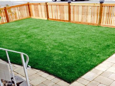 Artificial Grass Photos: Plastic Grass Lake City, Florida Landscape Ideas, Small Backyard Ideas