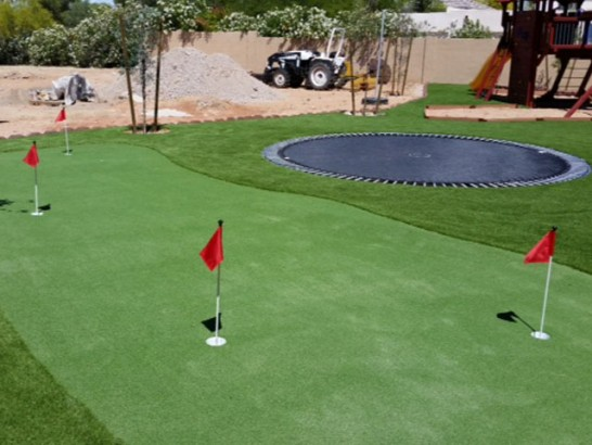 Plastic Grass Monticello, Florida Golf Green, Backyard Garden Ideas artificial grass