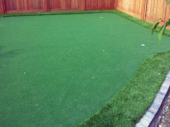 Artificial Grass Photos: Plastic Grass Palm Valley, Florida Best Indoor Putting Green, Backyard Design